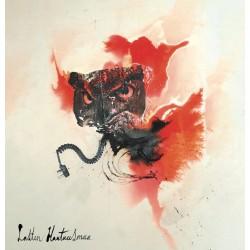 Lasten Hautausmaa: IV (LP)