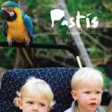 "Pastis: Amazon (7"")"