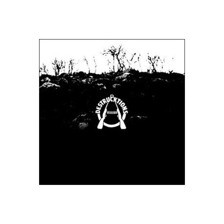 Destrucktions: Complete Destrucktions (LP)