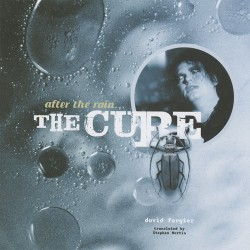 After The Rain... The Cure (book)