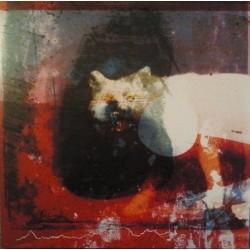 Mogwai: As The Love Continues (CD)